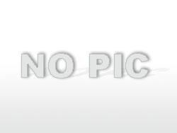 Corona-Kalender (Tag 1-20)