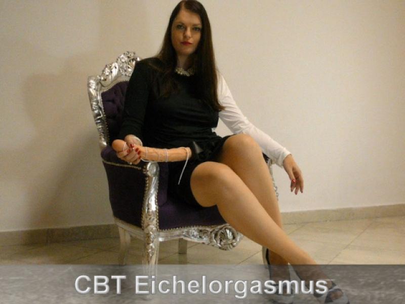 CBT Eichelorgasmus Wichsanleitung