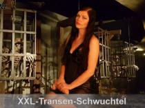XXL-Transenschwanz-Schwuchtel